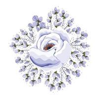 Buds around blue rose flower painting