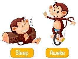 Opposite words with sleep and awake