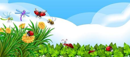 Empty nature background with many different insects vector