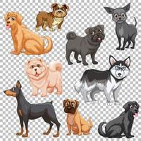 conjunto de diferentes perros aislados vector