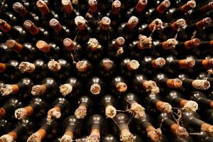 Vintage wine bottles in cellar photo