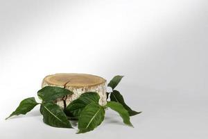 Podio de tronco de madera y hojas verdes.