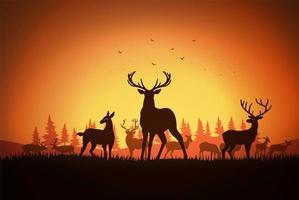 deer at the field vector