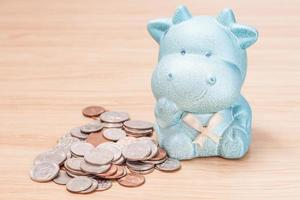 Blue cow doll with coins photo