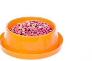 Dry cat food in an orange bowl
