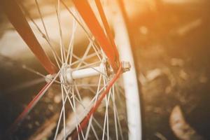Close-up detail of bicycle wheel.