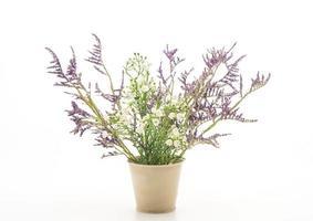 Statice y caspia flores en un jarrón sobre fondo blanco.