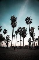 playa de venecia, la foto