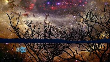 conducción de automóviles en el espejo de agua y el reflejo de la nebulosa galaxia