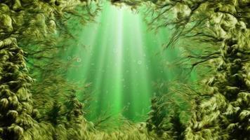 boucle océanique d'algues de style dessin animé