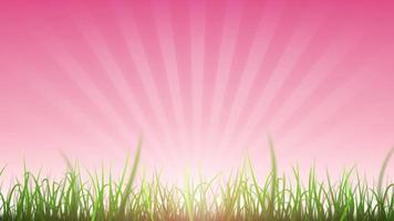 herbe laisse sur la boucle de fond de beau ciel