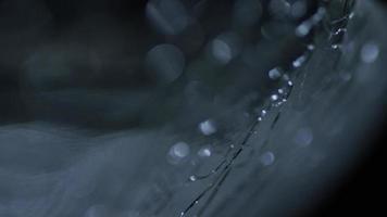fundo de movimento abstrato cinematográfico (sem uso de cgi) 0087