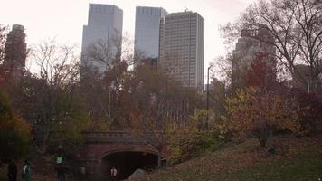parque central con fondo de nueva york
