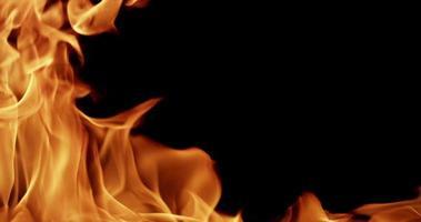 modèle chaud de flammes sauvages avec de hautes cuspides à gauche au ralenti 4k video