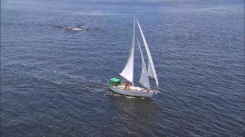 Aerial circling a sailboat in the ocean