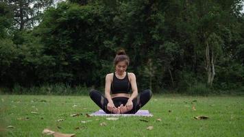 mulher bonita fazendo ioga no parque video