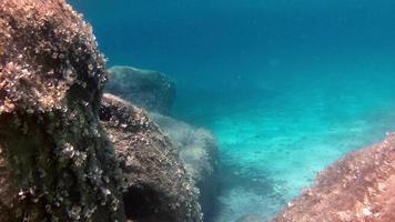 cámara de natación ropa interior entre rocas en 4k