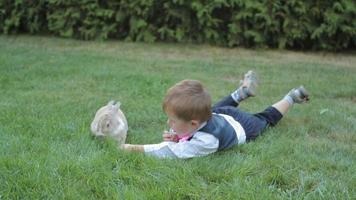 niño intenta alimentar a un conejito
