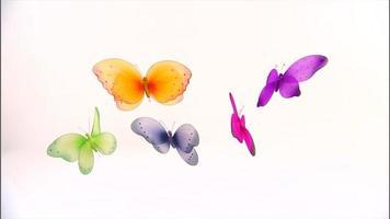 coloridas mariposas colgando