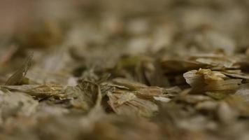 dose rotativa de cevada e outros ingredientes de fabricação de cerveja - fabricação de cerveja 315