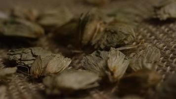 Rotating shot of barley and other beer brewing ingredients - BEER BREWING 277 video