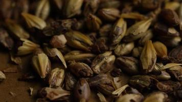 Rotating shot of barley and other beer brewing ingredients - BEER BREWING 084 video