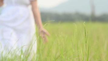 Mujer con vestido blanco paseando y tocando la parte superior de la hierba alta