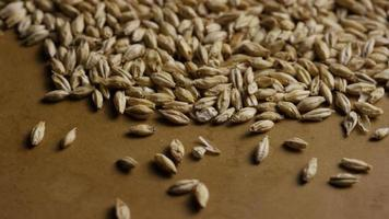dose rotativa de cevada e outros ingredientes de fabricação de cerveja - fabricação de cerveja 120