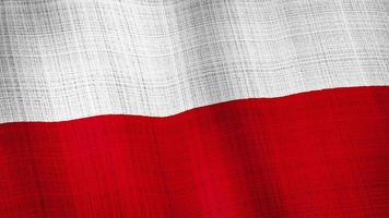 Poland flag waving, A flag animation background.