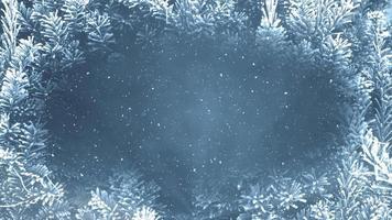 ciclo invernale di abete congelato