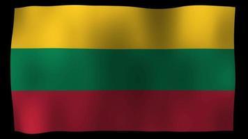 lithuania flag 4k motion loop video estoque