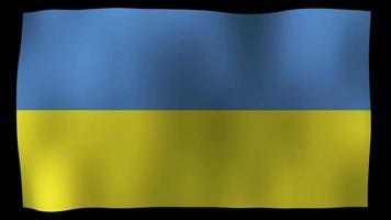 ukraine flag 4k motion loop video estoque