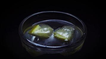 colocando limón congelado en hielo