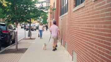 Menschen und kleiner Hund gehen auf Bürgersteig in Chicago