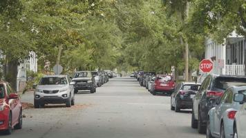 clipe de mão de uma rua com carros e belas árvores video
