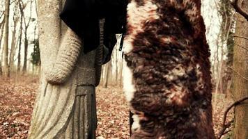belle femme viking évoque une sculpture ancienne video