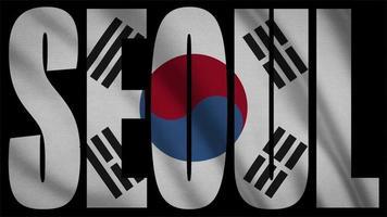 drapeau coréen du sud avec masque de séoul video