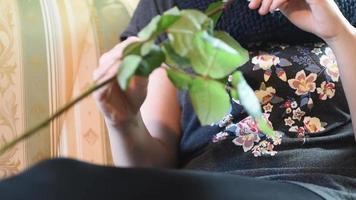 regalo de San Valentín. niña oliendo una rosa roja