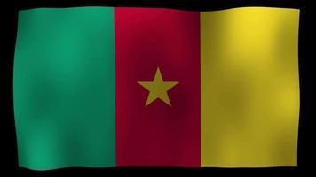 vídeo de stock de bucle de movimiento de 4k de bandera de Camerún