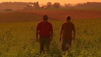 padre e figlio nel campo dell'azienda agricola