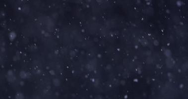 cena escura de inverno com neve linda caindo lentamente em 4k video