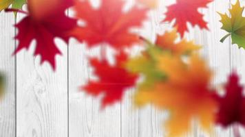 Autumn falling leaves with white wooden background placeholder animation video