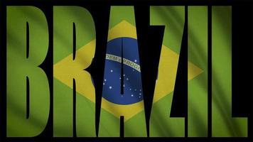 drapeau du brésil avec masque du brésil video