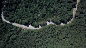 vista de pájaro de la carretera en el bosque en 4k