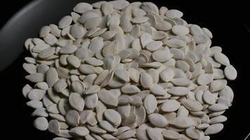 ripresa cinematografica e rotante di semi di zucca - semi di zucca 029