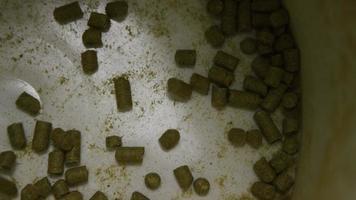 Imágenes en cámara lenta de suministros y procesos de elaboración casera de cerveza: elaboración de cerveza 027