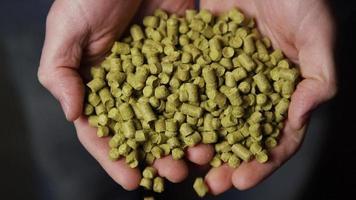 Imágenes en cámara lenta de suministros y procesos de elaboración casera de cerveza: elaboración de cerveza 067 video