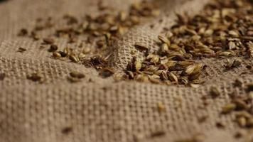 dose rotativa de cevada e outros ingredientes de fabricação de cerveja - fabricação de cerveja 241