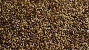 dose rotativa de cevada e outros ingredientes de fabricação de cerveja - fabricação de cerveja 098