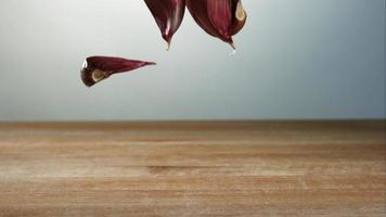 Knoblauchzehenstücke springen in Ultra-Zeitlupe (1.500 fps) auf einer Holzoberfläche - Grillphantom 036